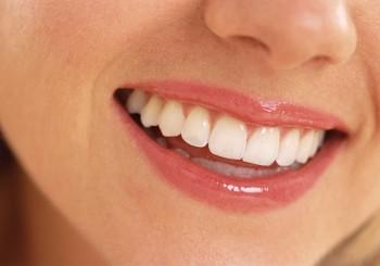 Endodontoloog in Rotterdam gevonden